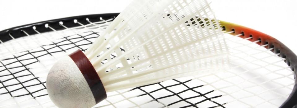 Senior Badminton Club