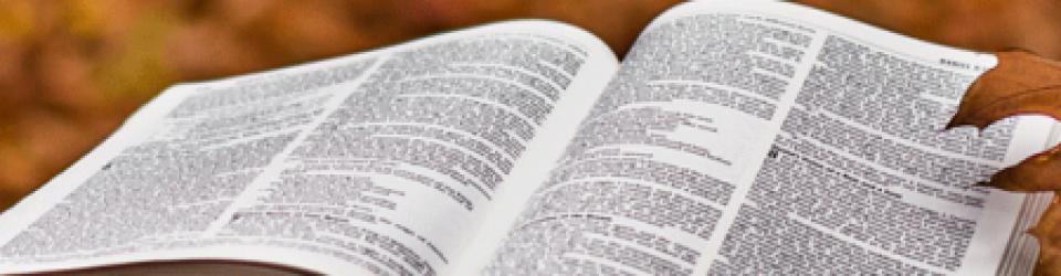 Bible#2