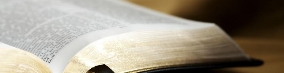 Bible#4